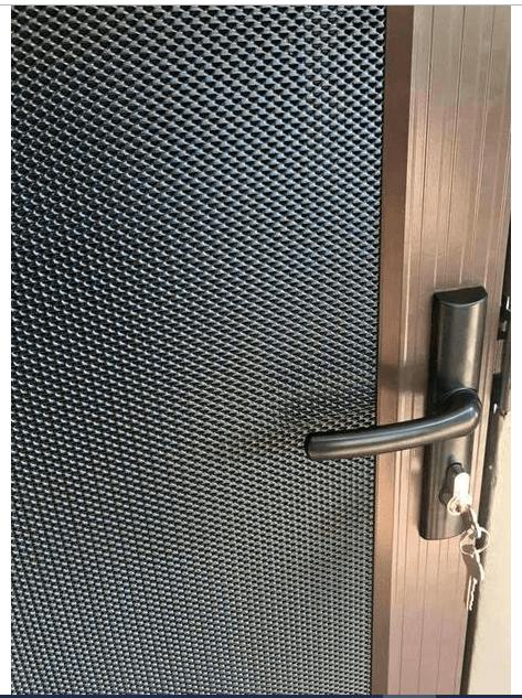 Vision Gard Security Door